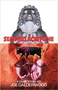 Stained Fortune Book Cover